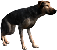200px-Bestiary_Dog_full.png