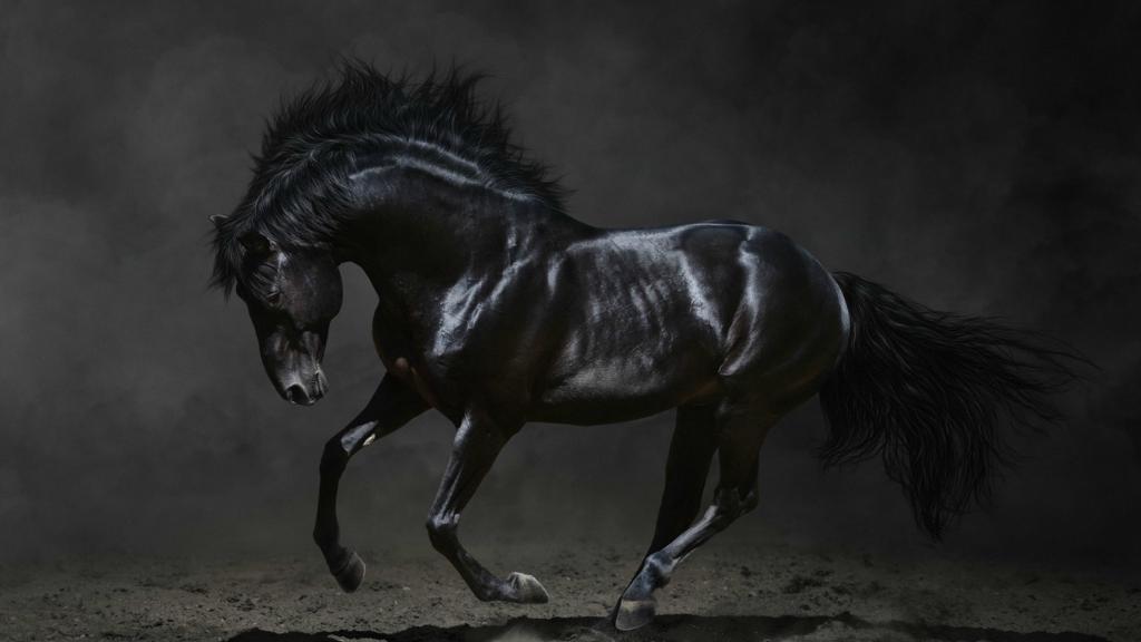 Какими вы представляете лошадей в Готике.png