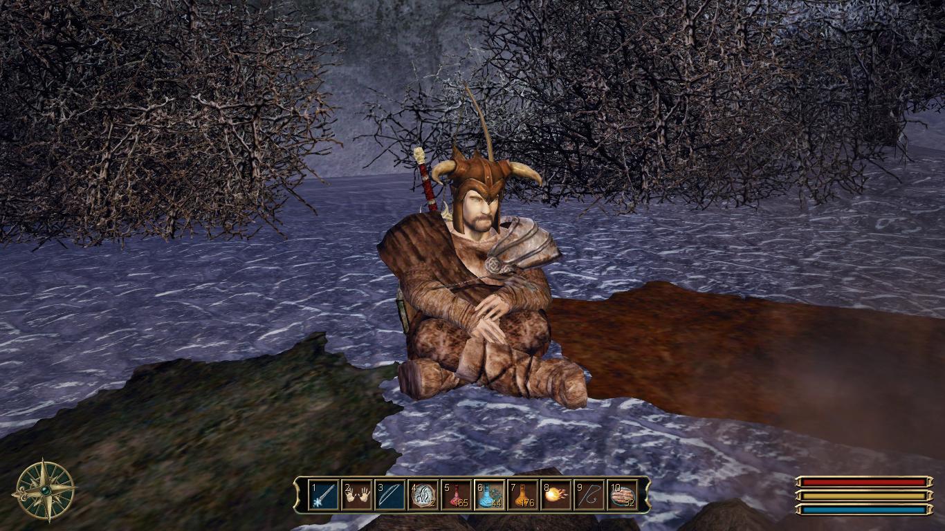 Безымянный Герой у костра около хижины друида Богира в клане Волка в Нордмаре.png