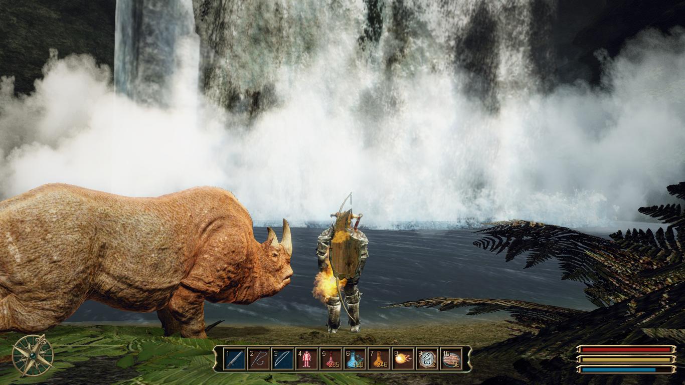 Безымянный с прирученным носорогом у водопадов.png