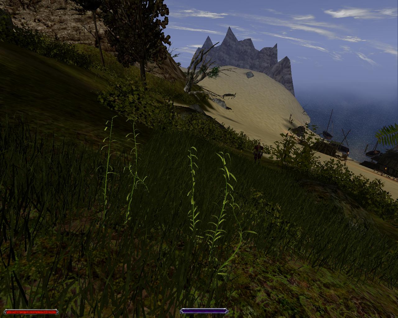 Gothic2 2010-09-17 23-03-43-70.jpg