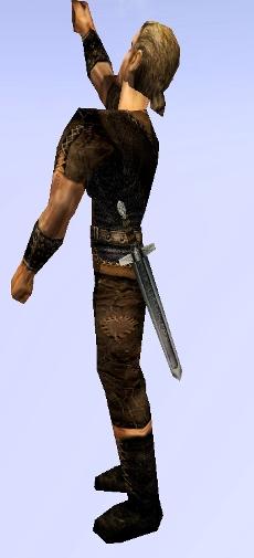 19 Короткий меч.jpg