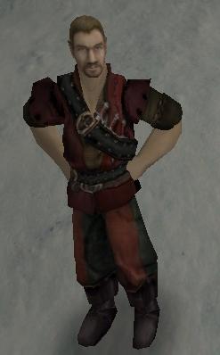 легк. пирата.jpg