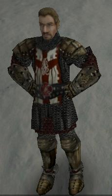 орд-рыцаря.jpg